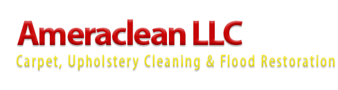 Carpet cleaning services in northern Virginia- Ame